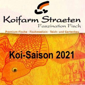 Koi-Saison 2021